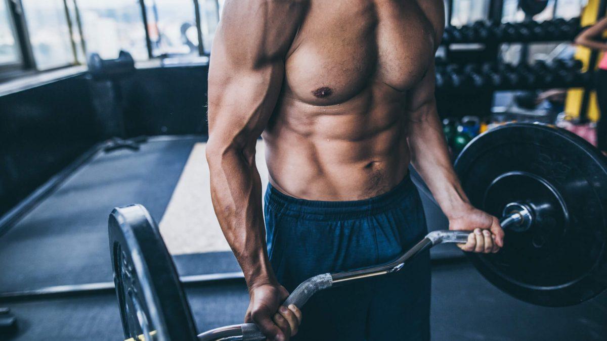 Conheça os principais músculos do abdômen e como trincá-los